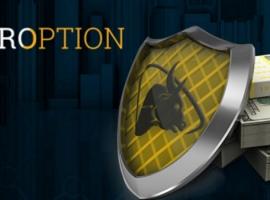 Обзор официального сайта брокера Tor Option