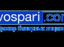 Обзор официального сайта брокера Vospari