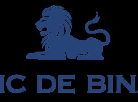 Обзор официального сайта брокера Banc De Binary