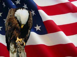 Где и как торговать бинарными опционами в США